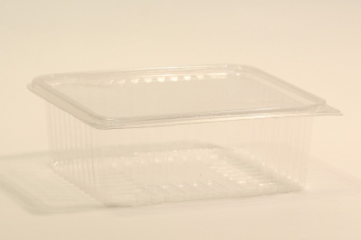 Square tray with connected lid   SN:5560 segal